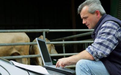 Feed management technology: Ag-tech's missed opportunity?