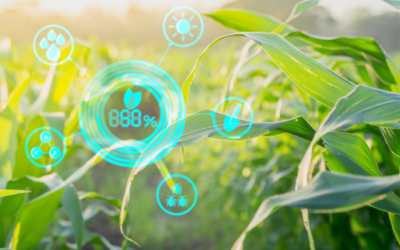 How ag-tech can improve sustainable agriculture